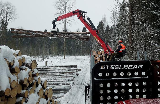 Лесовозные сцепки STEELBEAR – к тесту готовы!